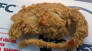 150616200501-kentucky-fried-rat-erin-pkg-moos-00000527-exlarge-169-pollo-kfc-cnnespanol