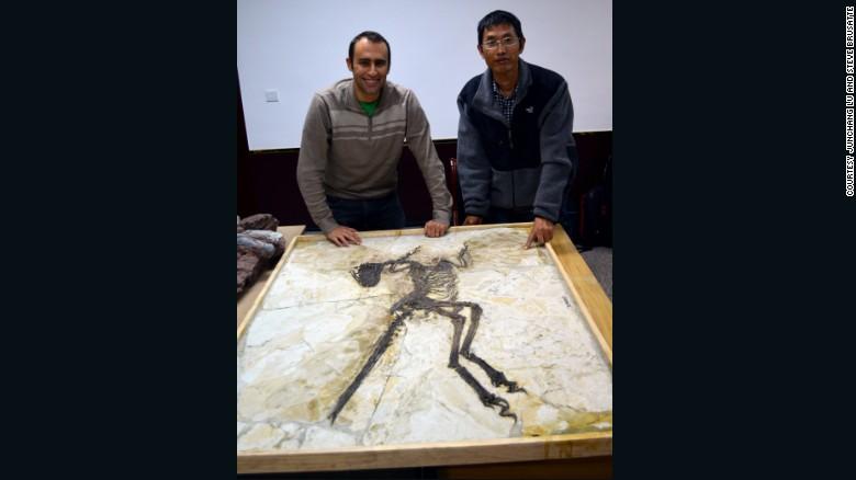 Steve Brusatte, a la izquierda, y Lu Junchang posan frente al esqueleto de Zhenyuanlong.