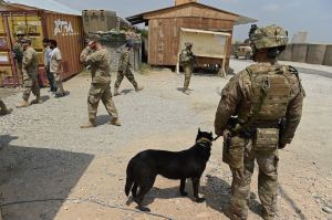 Tropas estadounidenses en Afganistán. (Crédito: WAKIL KOHSAR/AFP/Getty Images)