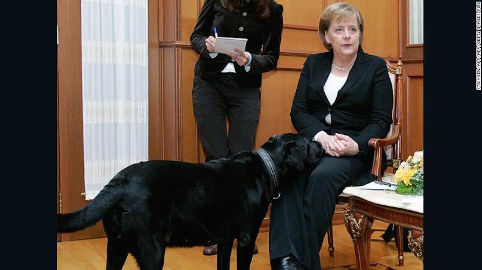 Merkel, está claramente incómoda mientras Koni, el perro del presidente Putin, se le acerca en una reunión en Sochi, en 2007.