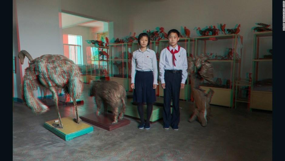"""O Kyong Ju, de 16 años, y Cha Gum Song, de 15 años, en la escuela media Kim Jong Suk Middle School – """"Dos niños en una clase de biología con todos los animales de taxidermia... este era un lugar increíble, una luz natural increíble que provenía de las ventanas, una foto grandiosa""""."""