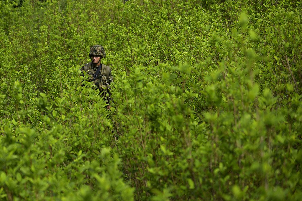 A Colombian soldier provides security to a group of peasants working in eradication of coca plantations in the mountains of Yali municipality, northeast of Medellin, Antioquia department, on September 3, 2014. More than 100 hectares of coca plantations have been destroyed in three months, according to local authorities. Colombia is responsible for 41.6 percent of the world's coca plantations, followed by Peru with 40.7 percent and Bolivia with nearly 18 percent. AFP PHOTO/Raul ARBOLEDA (Photo credit should read RAUL ARBOLEDA/AFP/Getty Images)