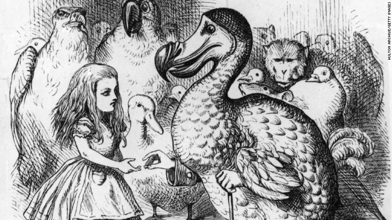 """El dodo se hizo muy popular gracias al libro """"Alicia en el país de las maravillas"""", de Lewis Carroll."""