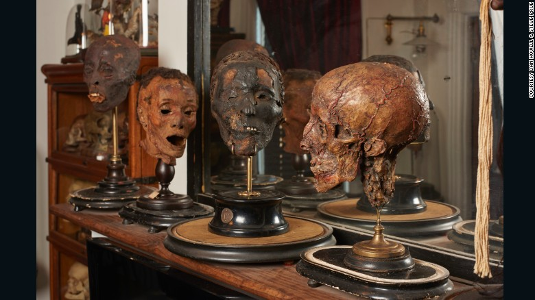 Cabezas encogidas, esqueletos fetales y otros coleccionables extraños - Ryan Matthew Cohn comenzó a coleccionar huesos de animales de los bosques cercanos a su casa cuando era niño. Recibió su primer cráneo humano como regalo de cumpleaños cuando tenía 15 años.