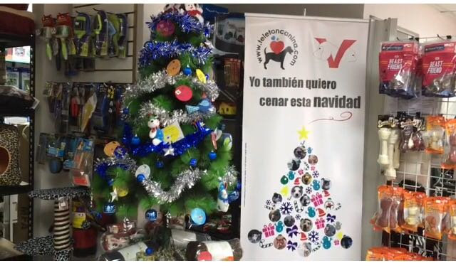 Varias veterinarias tienen árboles de navidad para donaciones a animales víctimas del maltrato. (Crédito: Djenane Villanueva)