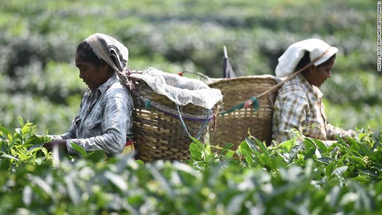 Casi la mitad de los trabajadores del sur de Asia viven en condición de extrema o moderada pobreza, según la OIT.
