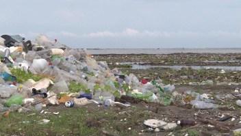 Nueva estrategia para la conservación ambiental en Gran Bretaña