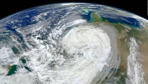 ¿Cómo pueden salvar al medio ambiente los políticos?