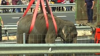 Un elefante muerto y dos heridos tras chocar el camión del circo