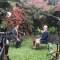 Kuczynski: No hubo negociación para el indulto de Fujimori