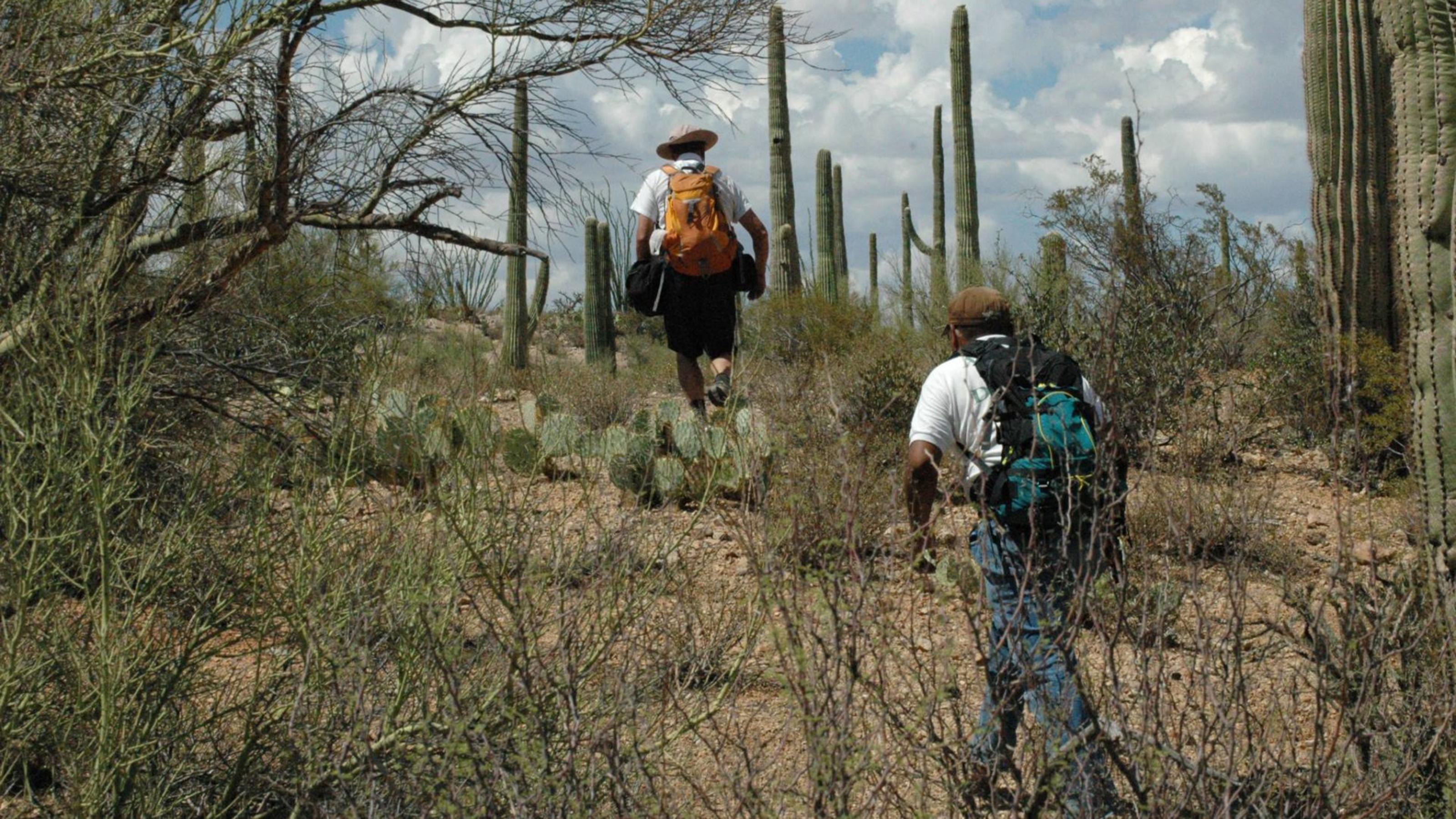 La organización sin fines de lucro de búsqueda y rescate Los Angeles Del Desierto (Desert Angels) que trabaja en la Reserva Tohono O'odham en el sur de Arizona.