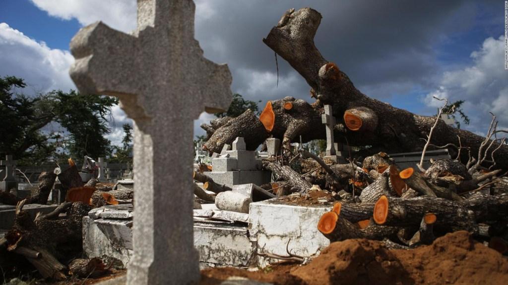 Cifra de muertos en Puerto Rico por María es de 4.000: Harvard