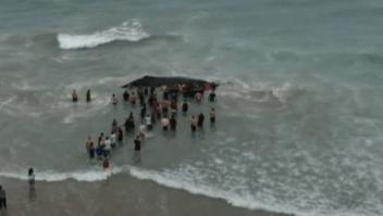 #LaImagenDelDía: basura marina mata a una ballena