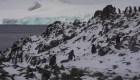 Los secretos climáticos están escondidos en la Antártida