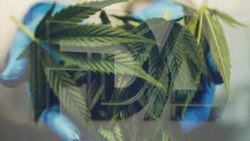 Aprueban en EE.UU. medicamento con marihuana para la epilepsia infantil