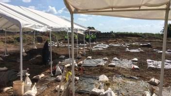 Encuentran en Texas restos de un centenar de esclavos enterrados