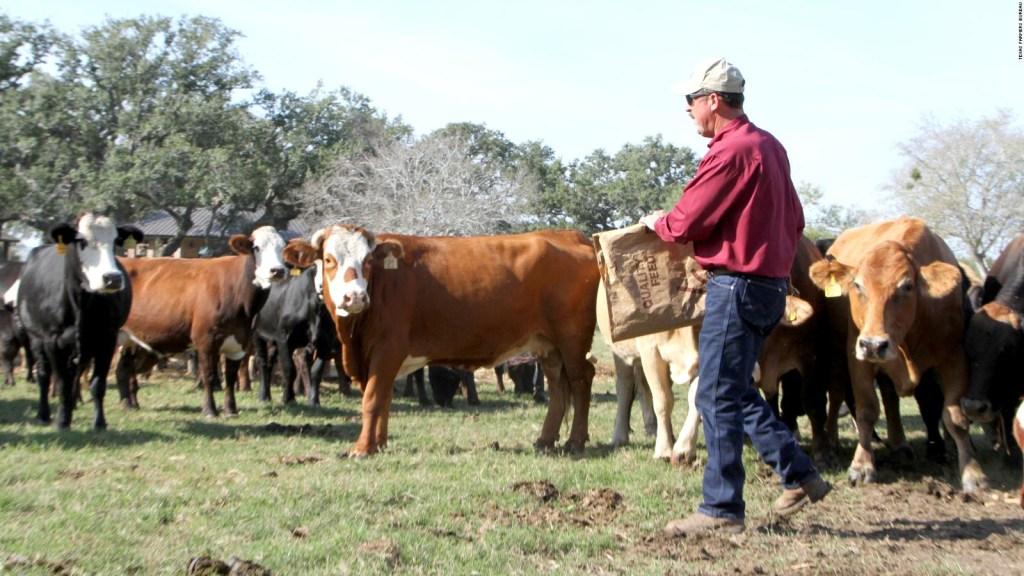 Ayuda para agricultores en Estados Unidos