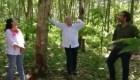 AMLO planea sembrar árboles en área del tamaño de Líbano
