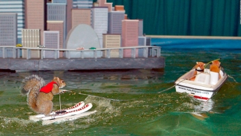 #LaImagenDelDía: se retira un ícono de esquí acuático, la ardilla Twiggy