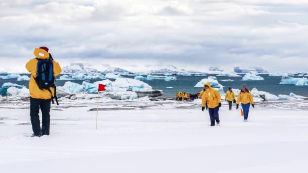 Hola desde la Antártica. (Crédito: Shutterstock)
