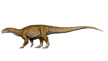 Recreación de Ingentia Prima, el primer dinosaurio gigante. (Crédito: Universidad de San Juan).