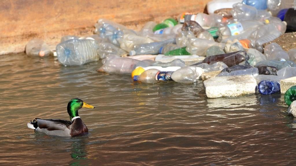 El plástico que se desintegra en el agua