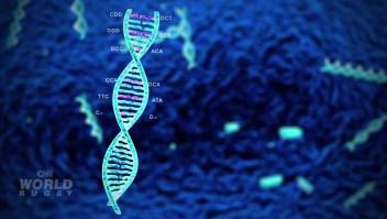 ¿Por qué tu ADN podría estar resolviendo casos criminales antiguos?