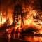 Incendios forestales en EE.UU.: más duraderos y potentes que nunca