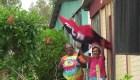 Nicaragüense: Nos han amenazado por apoyar a Daniel Ortega
