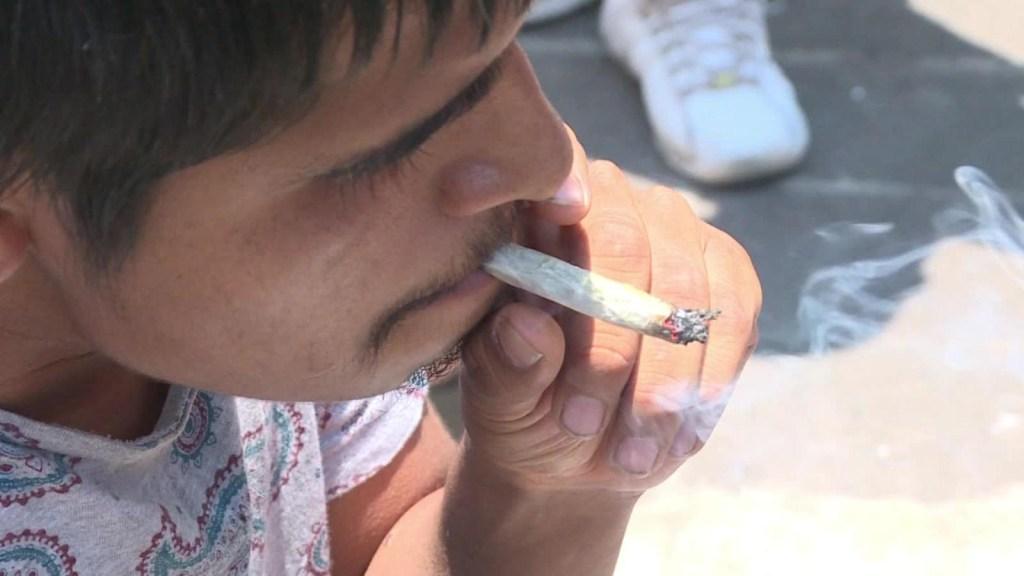 Ciudad de México, la primera ciudad del país en permitir la marihuana medicinal