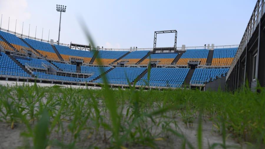 Salvaje: dentro del estadio de voleibol playa, es igualmente misterioso y las malezas están creciendo salvajemente.