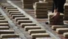¿A qué se debe el aumento de la siembra de coca en Colombia?