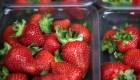 Fresas contaminadas con agujas y alfileres en Australia
