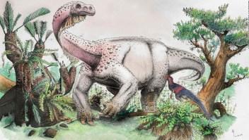 """Hallan restos de un dinosaurio llamado """"trueno gigante"""""""