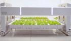 Granja autónoma puede cuidar individualmente a cada planta