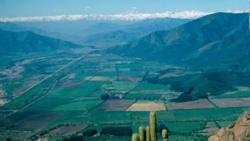 WWF: América Latina está perdiendo su población y diversidad natural