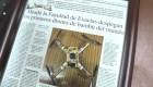 ¿Qué son los drones de bambú?