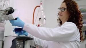 Ingenieros logran crear un colorante azul 100% natural