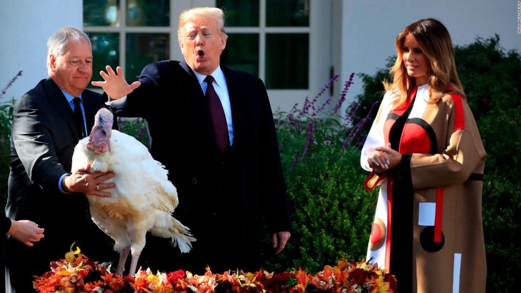 Peas, un pavo indultado por Trump