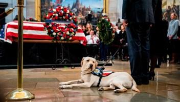 Sully acompaña los restos de Bush hasta el Capitolio