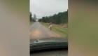 Padre castiga a su hija con ir a pie al colegio
