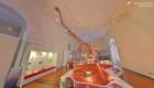 Renace el Museo Nacional de Brasil gracias a la tecnología