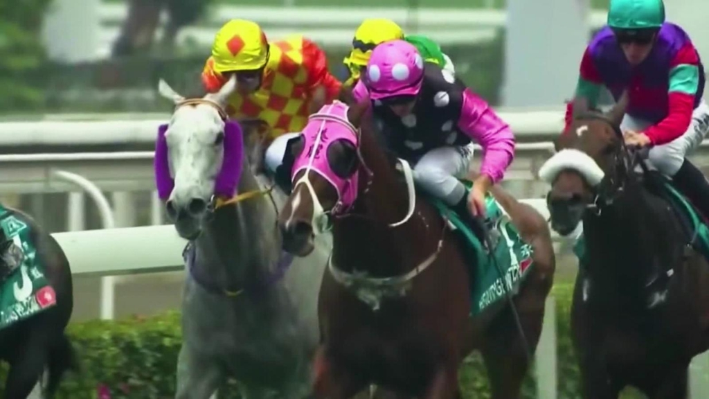 Hong Kong, donde solo se pueden tener 4 caballos
