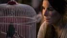 #CifraDelDía: 80 millones de visualizaciones para Bird Box