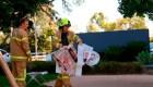 Australia: Investigan procedencia de paquetes sospechosos en embajadas y consulados