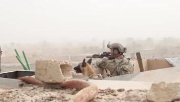 EE.UU. busca proteger a los kurdos, Erdogan dice que son terroristas