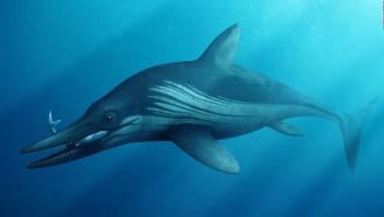 Reconstruyen cráneo de reptil marino de 200 millones de años