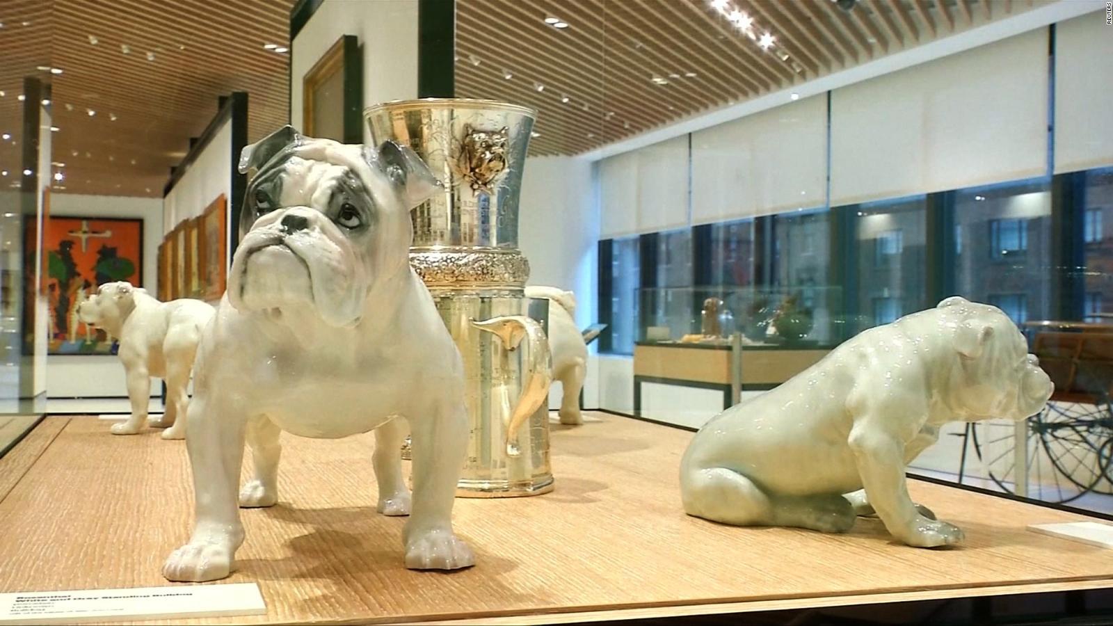 Eldatodehoy Inauguran Un Museo En Honor Al Perro En Nueva York Video Cnn