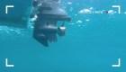 Mito: Un robot subacuático de control remoto