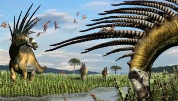 Argentina: Descubren dinosaurio con espinas